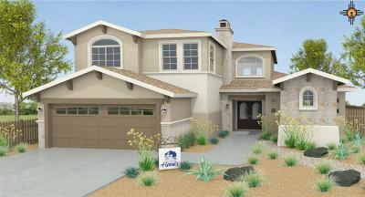 Hobbs Single Family Home Under Contract-Don't Show: 5303 W Dark Horse Road