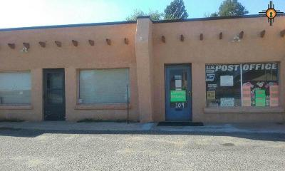 Curry County Commercial For Sale: 109 W Manana