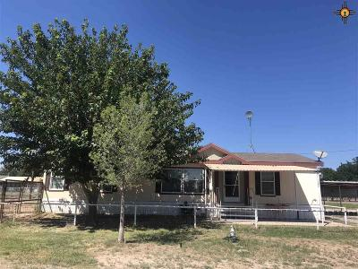 Lake Arthur NM Manufactured Home For Sale: $150,000