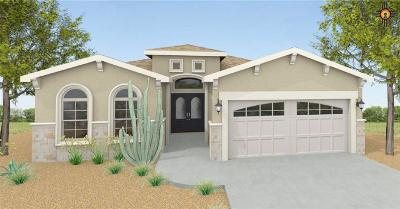 Hobbs Single Family Home Under Contract-Don't Show: 5204 W Dark Horse Road