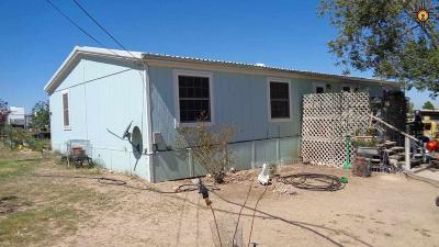 Manufactured Home For Sale: 1106 Townview Rd.