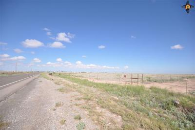 Residential Lots & Land For Sale: 0001 Hope Highway