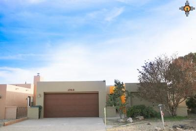 Carlsbad Single Family Home For Sale: 1905 Callaway Dr