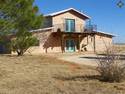 Portales NM Single Family Home For Sale: $175,000