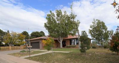 Las Vegas Single Family Home Active, U/C-Take Back Ups: 707 Lee Drive