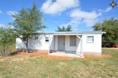 Portales Single Family Home For Sale: 294 S Roosevelt Rd R