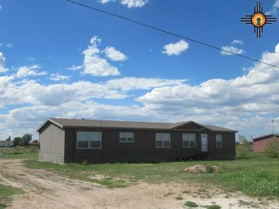 Hobbs Single Family Home For Sale: 13211 N Calle Chiquita Rd
