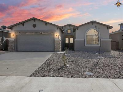 Hobbs Single Family Home Under Contract-Don't Show: 5224 W Dark Horse Road