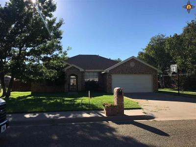 Clovis NM Single Family Home For Sale: $195,000
