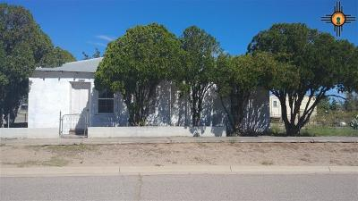 Sierra County Single Family Home For Sale: 202 E 6th