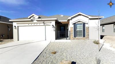 Hobbs Single Family Home For Sale: 5004 Big Red Rd
