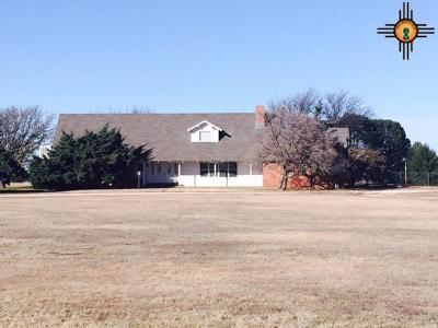 Roosevelt County Single Family Home For Sale: 492 Nm 235
