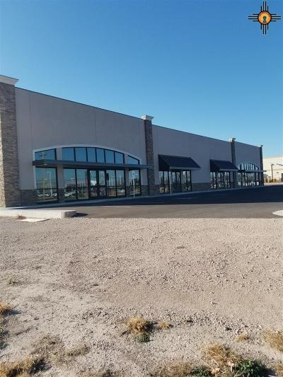 Hobbs NM Commercial For Sale: $5,400