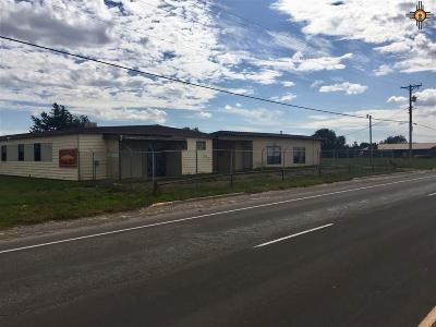Roosevelt County Commercial For Sale: 42415 Us 70