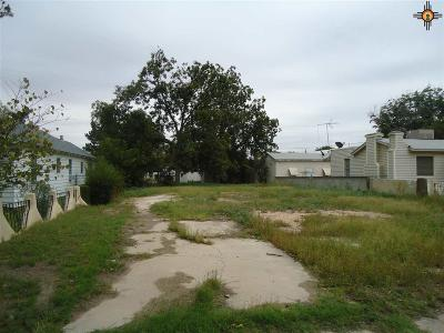 Residential Lots & Land For Sale: 308 N Mesquite Street