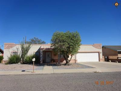 Deming Single Family Home For Sale: 2011 S Shelly