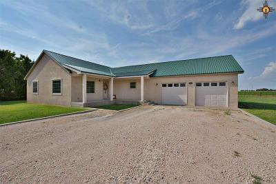 Portales Single Family Home For Sale: 224 Nm 267