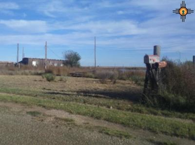 Curry County Residential Lots & Land For Sale: 1825 Hidalgo
