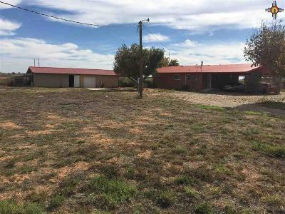 Portales Single Family Home For Sale: 139 New Mexico 467