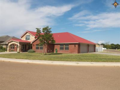 Clovis NM Single Family Home For Sale: $347,500
