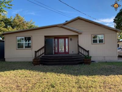 Carlsbad Single Family Home For Sale: 203 E Russell