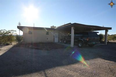 Sierra County Single Family Home For Sale: 150 Huron