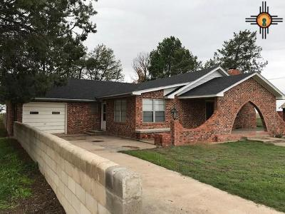 Portales Single Family Home For Sale: 2344 S Roosevelt Rd K