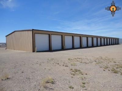 Commercial For Sale: Highway 195 & Warm Springs Blvd
