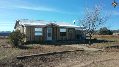 Las Vegas Single Family Home For Sale: 397 Cnty Rd A20