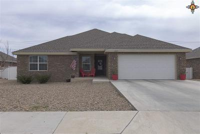 Portales Single Family Home For Sale: 2123 Mockingbird