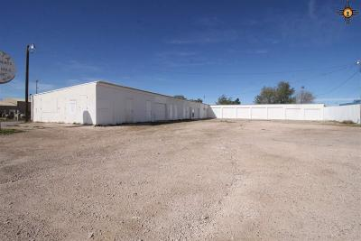 Commercial For Sale: 801 E Ave D