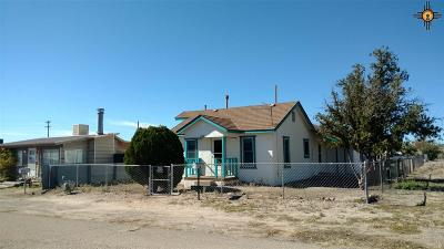 Sierra County Single Family Home For Sale: 1301 Nickel