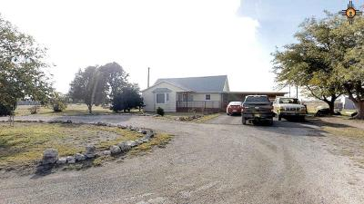 Hobbs Single Family Home For Sale: 4000 W Trevino Dr.