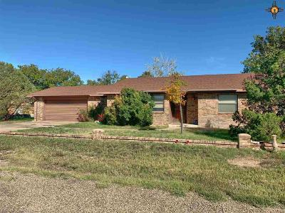 Portales Single Family Home For Sale: 2117 E 2nd St