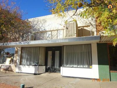 Commercial For Sale: 116 S Silver Avenue