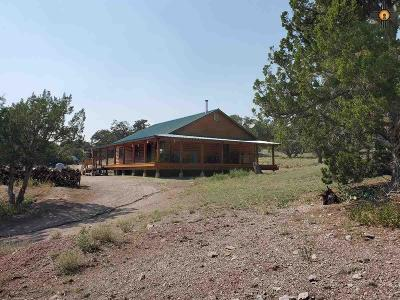 Catron County Single Family Home For Sale: 14 Knolltop Lane