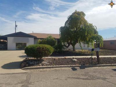 Deming Single Family Home For Sale: 1415 S Tennyson St