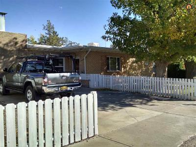 Deming Single Family Home For Sale: 807 S Zinc St