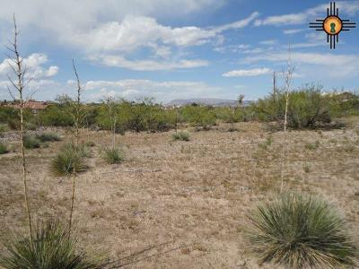 Elephant Butte NM Residential Lots & Land For Sale: $75,000