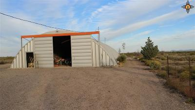 Deming NM Residential Lots & Land For Sale: $55,000