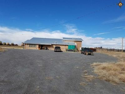 Commercial For Sale: 28 Sale Barn Rd