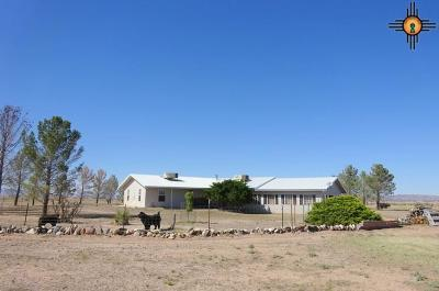 Deming Single Family Home For Sale: 18800 Candela Road SE