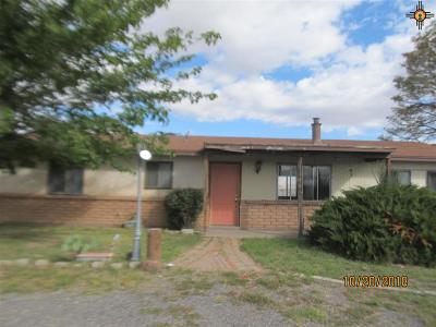 Deming Single Family Home For Sale: 515 Camilla St