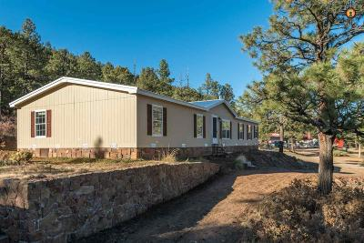 Manufactured Home For Sale: 1177 Highway 518