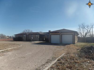 Portales Single Family Home For Sale: 120 E 18th Street