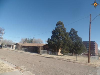Portales Single Family Home For Sale: 1723 S Ave M