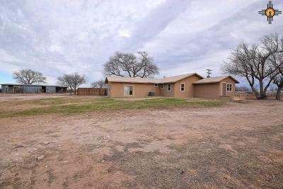 Portales Single Family Home For Sale: 2230 S Roosevelt Road 4 Ln