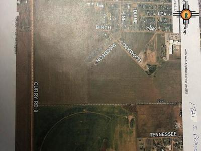 Curry County Residential Lots & Land For Sale: 1721 S Prince