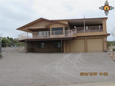 Sierra County Single Family Home For Sale: 201 Northern Drive