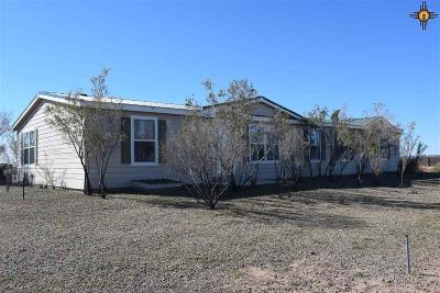 Deming Single Family Home For Sale: 27700 San Diego Rd SE